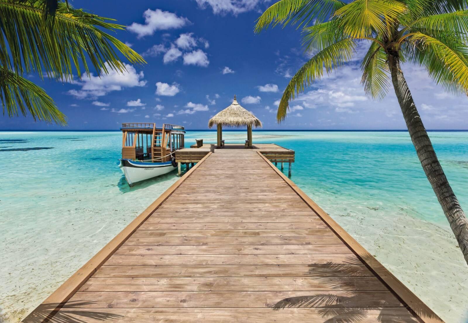 чаще пляж картинки красивые обои немногим удается вывести