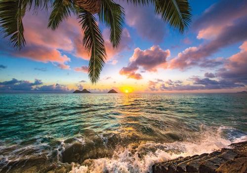фотообои закат солнца цена